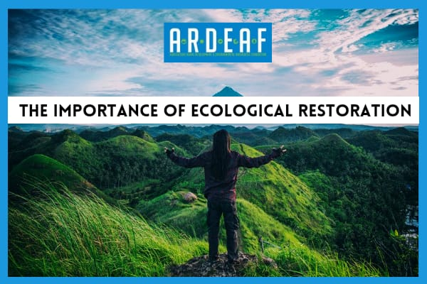World Environment Day and the importance of ecological restoration.