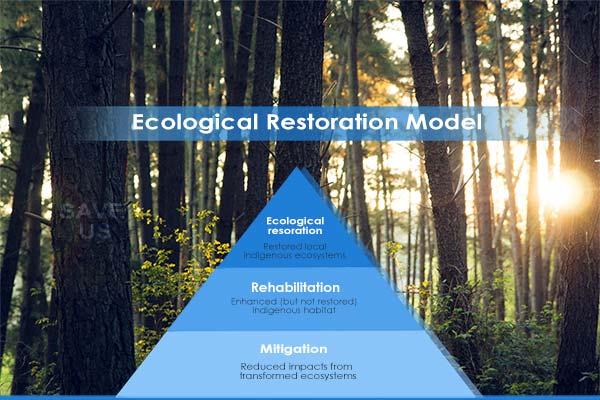 ecological restoration model